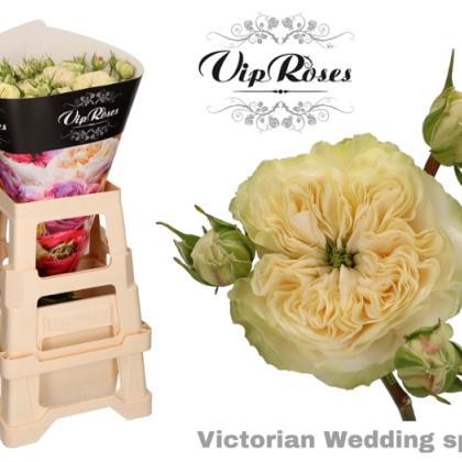 Spray Rose Victorian Wedding